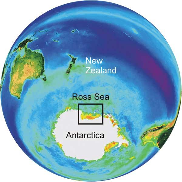 Making Ends Meet In The Ross Sea Niwa