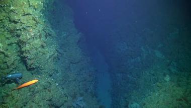 What does the ocean look like 6000 metres deep?