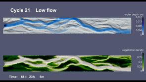 Modelling vegetation-impacted morphodynamics in braided rivers