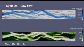 Modelling vegetation-impacted morphodynamics in braided rivers