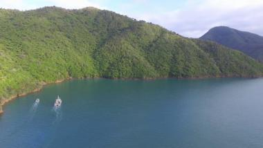 Marlborough Sounds Survey