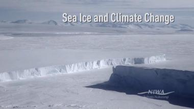Sea Ice and Climate Change