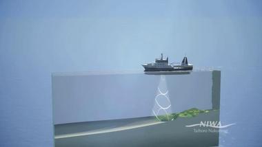 Echo, Echo: Scanning the Seafloor on R.V. Tangaroa