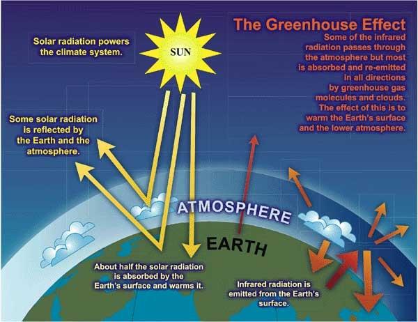 The Greenhouse Effect Niwa